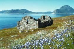 Ruiny kościoła Wikingów n Grenlandii.