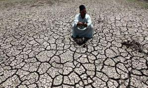 An Egyptian farmer on cracked soil